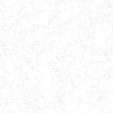 İCEBERG – 1110